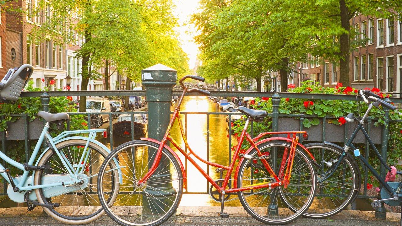 No próximo ano vou… Dedicar-me à bicicleta!